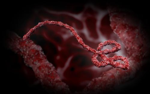 Ebola Song